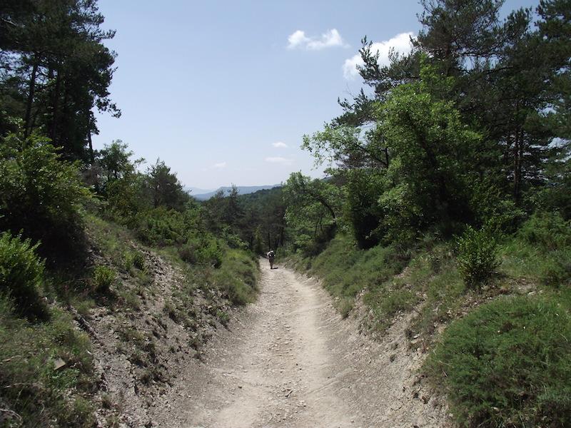 Jakobsweg 2011: Larrasoana