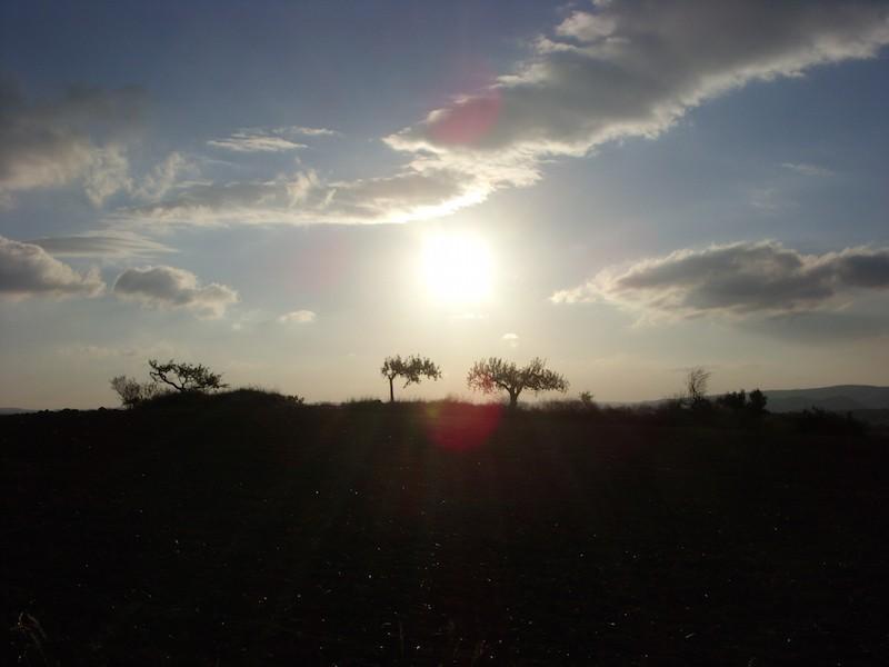 Schattenspiele auf dem Camino